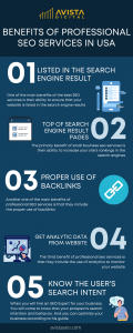 Benefits of Professional SEO Services in USA